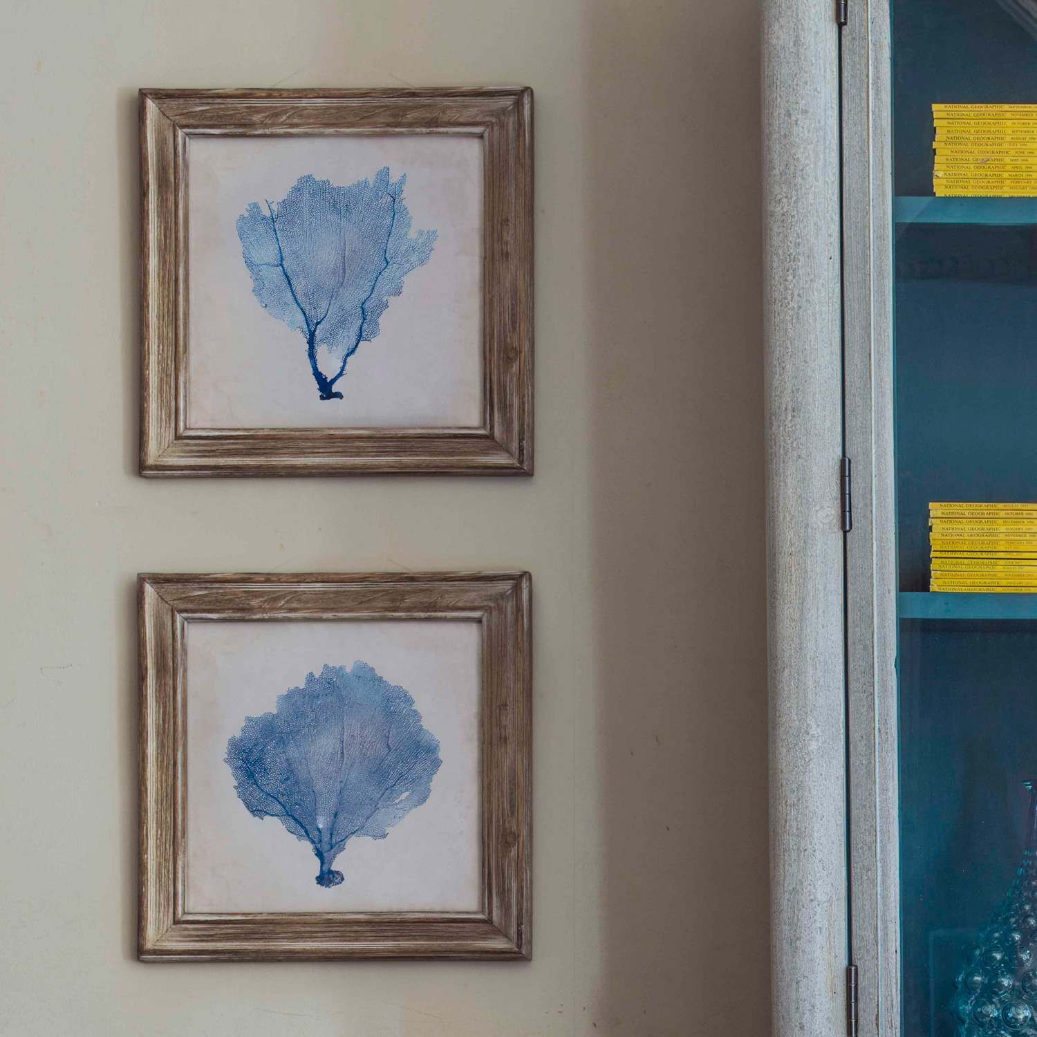 Set of two blue coral framed pictures