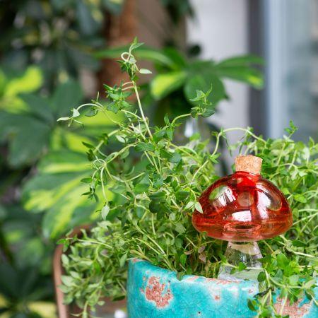 Mushroom Self-watering Plant Spike