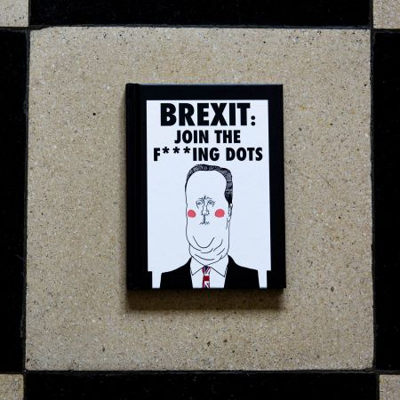 Brexit: Join The Dots Book