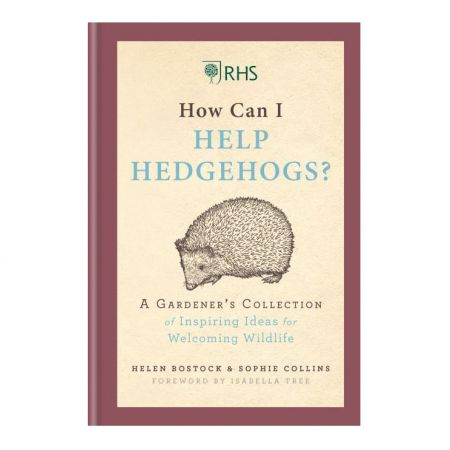 How Can I Help Hedgehogs Book
