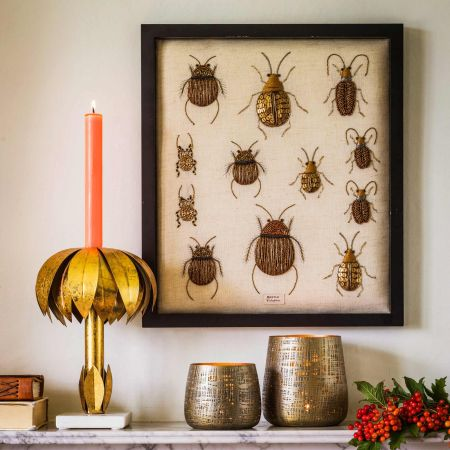Framed Embroidered Beetle Collection