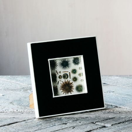 Black Diagonal Stripe Frame