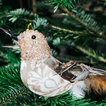 Brown Feather Bird Clip