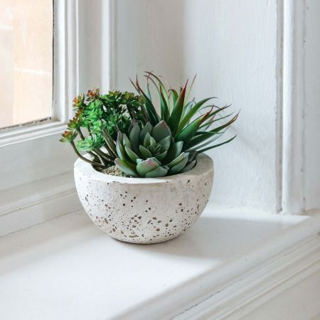 Faux Succulents Bowl