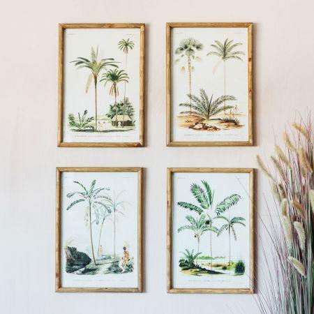 Set of Four Palm Tree Prints
