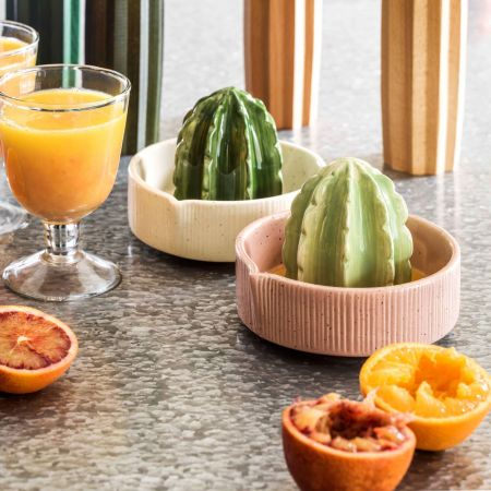 Ceramic Cactus Juicers
