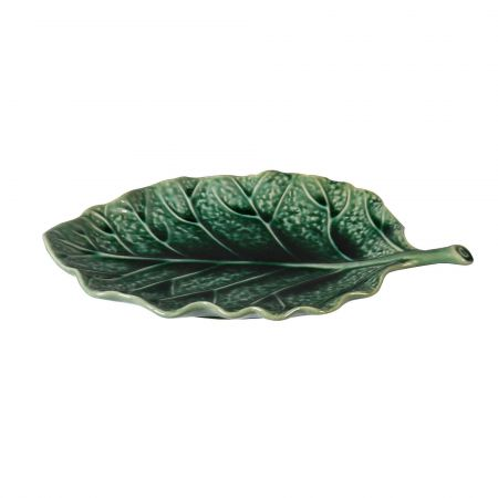 Green Cabbage Leaf Dish