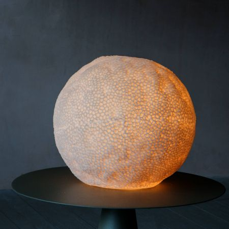 Large Coral Lamp