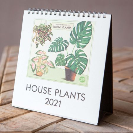 House Plant 2021 Desk Calendar