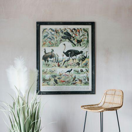 Vintage Animals Print