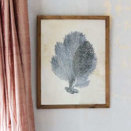 Framed Blue Coral Print