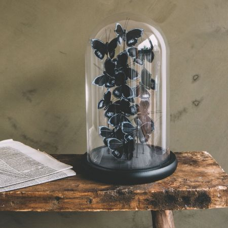 Faux Butterflies in Bell Jar