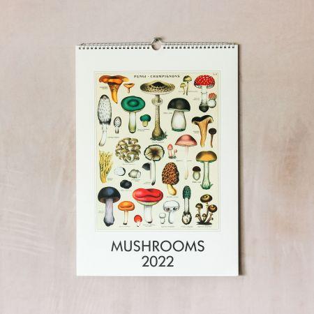 Mushrooms 2022 Wall Calendar