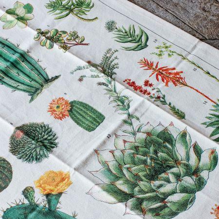 Succulents Vintage Tea Towel
