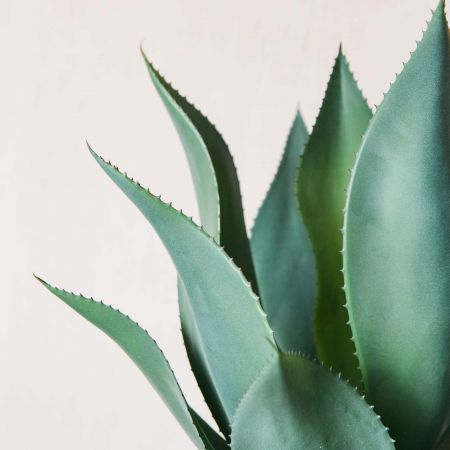 Faux Aloe in Green Pot