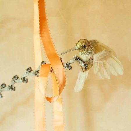 Feathered Glitter Hummingbird - Thumbnail