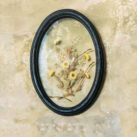Framed Dried Yellow Flowers