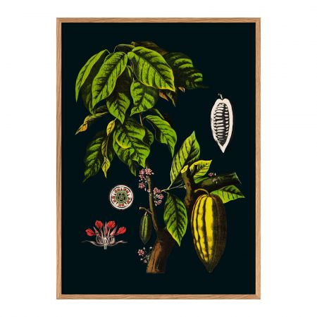 Small Framed Cacao Print