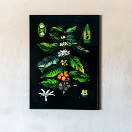 Medium Framed Coffee Print