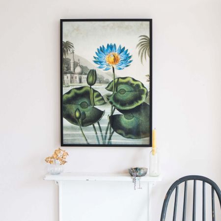 Small Framed Blue Water Lily Print