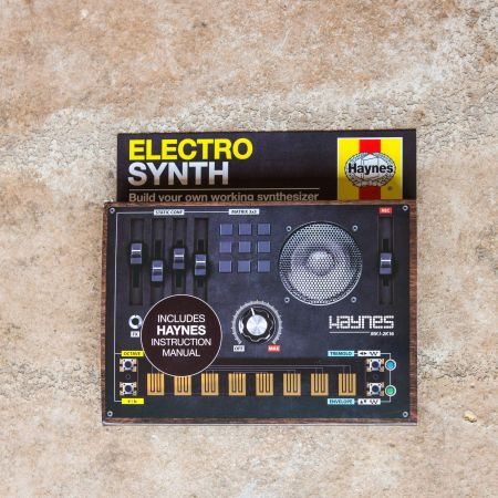 Haynes Electro Synth