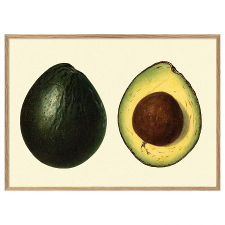 Medium Framed Avocado Print