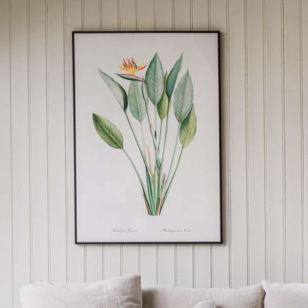 Large Framed Crane Flower Print