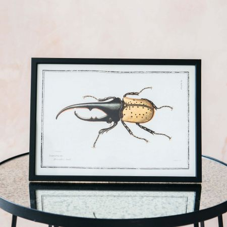 Small Framed One Bug Print