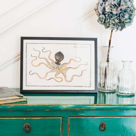 Small Framed Octopus Print
