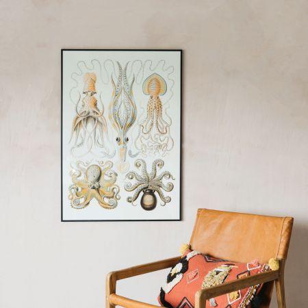 Medium Framed Octopus Print
