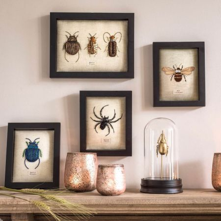 Framed Embroidered Insects