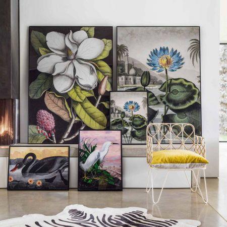 Medium Framed Blooming Magnolia Print
