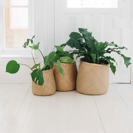 Set of Three Natural Seagrass Baskets