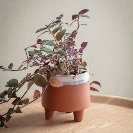 Halston Small Terracotta Pot