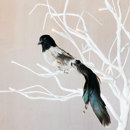 Black Feather Bird Clip