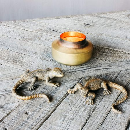 Set of Two Gold Lizards