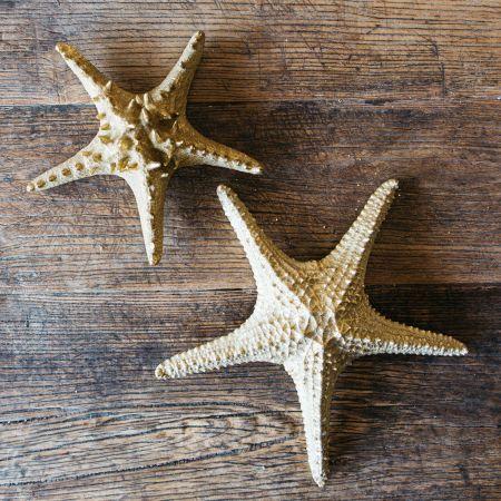 Gold Starfish Ornaments