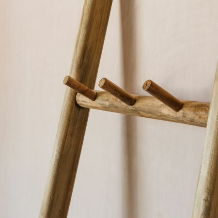 Ladder with Hooks