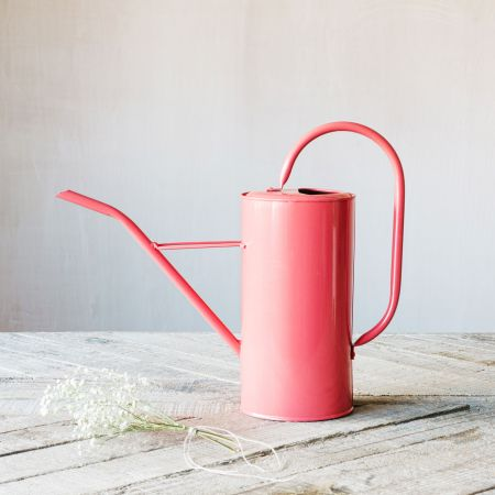 Faded Rose Watering Can