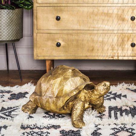 Tarquin the Tortoise