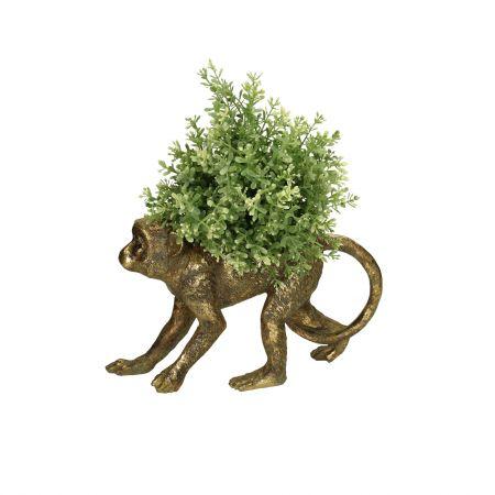 Gold Monkey Planter