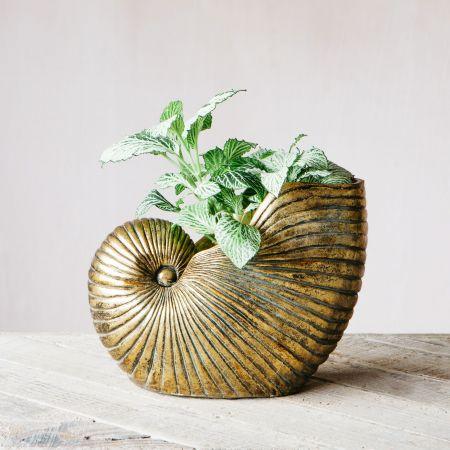 Gold Shell Planter