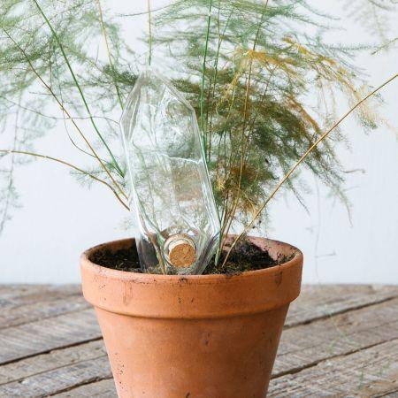 Plant Watering Crystal