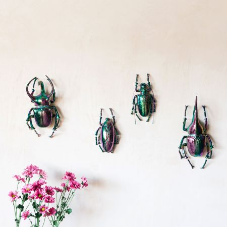 Iridescent Black Beetles