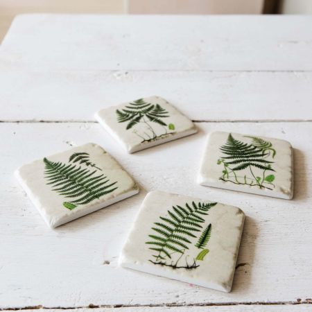 Set of Four Green Fern Coasters