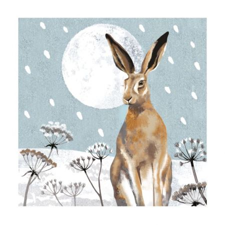 Set of Eight Hare and Moon Christmas Cards