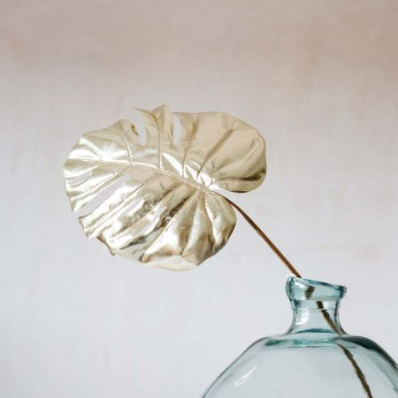 Single Monstera Leaf