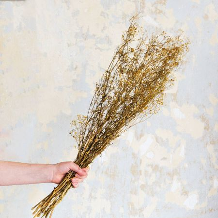Dried Yellow Baby's-Breath Bunch