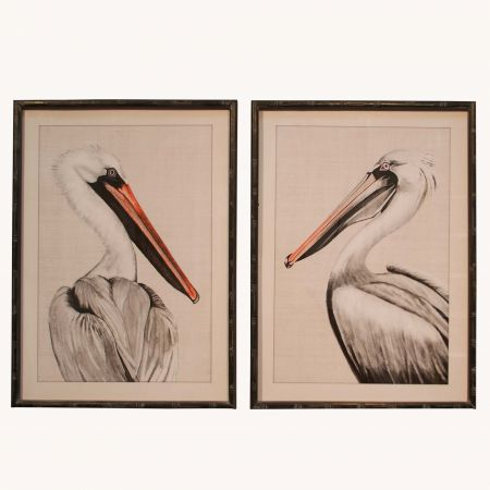 Set of Two Framed Pelican Prints