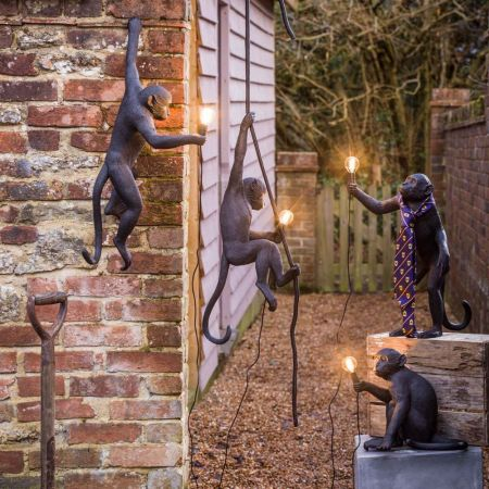 Outdoor Black Monkey Lights